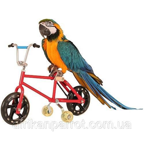 Parrot Велосипед - игрушки для попугая Montana Cages