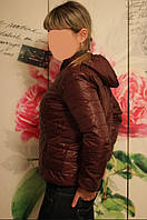 Куртка ветровка Joyen бордовая, L