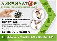 Уничтожение комаров на открытых площадях в Киеве