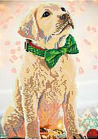 Схема для вышивки бисером POINT ART Милый лабрадорчик, размер 21х30 см