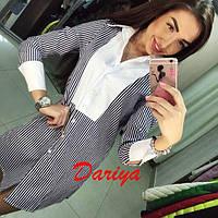 Платье-рубашка в полосочку с контрасными манжетами 005 (НБН)