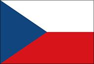 Письменный перевод на чешский язык