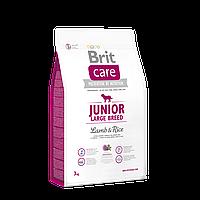 Brit Care Junior Large Breed Lamb & Rice корм для щенков крупных пород, 3 кг