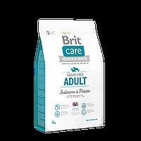 Brit Care Grain-free Adult Salmon & Potato беззерновой корм для собак мелких и средних пород, 3 кг