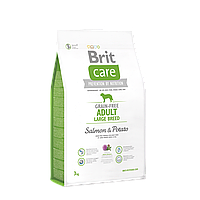 Brit Care Grain-free Adult Large Breed Salmon & Potato беззерновой корм для собак крупных пород, 3 кг