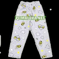 Детские летние лосины (леггенсы) р. 98 для девочки тонкие ткань СТРЕЙЧ-КУЛИР 95% хлопок 3615 Серый