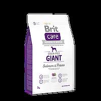 Brit Care Grain-free Adult Giant Salmon & Potato беззерновой корм для собак гигантских пород, 3 кг