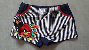 Плавки полосатые Angry Birds для мальчика, 28-36 рр.