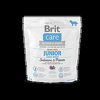 Brit Care Grain-free Junior Large Breed Salmon & Potato беззерновой корм для щенков крупных пород, 1 кг
