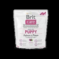Brit Care Grain-free Puppy Salmon & Potato беззерновой корм для щенков всех пород, 1 кг