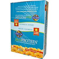 Garden of Life, fucoProtein, с арахисовым маслом, 12 хрустящих батончиков по 55 г