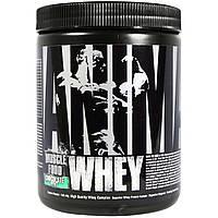 Universal Nutrition, Animal, сывороточный протеин для мышц, шоколад-мята, 136,44 г