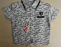 Детская летняя рубашка с коротким рукавом для мальчиков 1-4 года