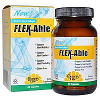 Country Life, Flex-Able для суставов с биоактивным коллагеном II типа, 60 капсул