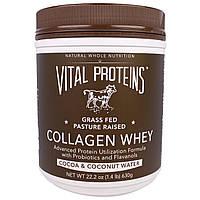 Vital Proteins, Коллаген с сывороткой, со вкусом какао и кокосовой воды, 22,2 унции (630 г)