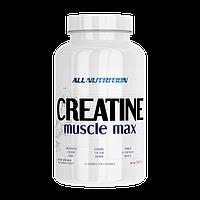 Креатин AN Creatine Muscle Max, 250 g
