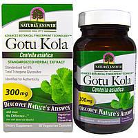 Natures Answer, Готу кола, стандартизированный травяной экстракт, 300 мг, 60 вегетарианских капсул