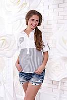 Летняя женская блуза Зарина 2 Arizzo 44-50 размеры