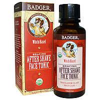 Badger Company, Бодрящий тоник для лица после бритья, 4 унции (118 мл)