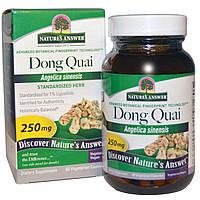 Natures Answer, Дудник китайский, 250 мг, 60 растительных капсул