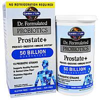 Garden of Life, Простата+, пробиотик для поддержания здоровья простаты из серии Составлено врачом, 30 капсул в растительной оболочке