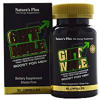 Natures Plus, GHT Male, гормон роста человека для мужчин, с тестостероном, 90 капсул