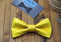 Галстук-бабочка из кожи питона (010858S) Yellow