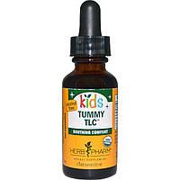 Herb Pharm, Детский органический сироп от болей в животе, безалкогольный, 1 жидкая унция (30 мл)