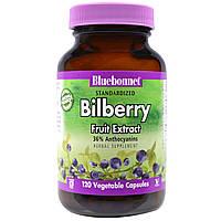 Bluebonnet Nutrition, Стандартизированный экстракт плодов черники, 120 капсул в растительной оболочке