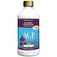 Buried Treasure, Жидкие питательные вещества, быстрое облегчение ACF, иммунная поддержка, 16 жидких унций (473 мл)