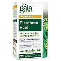 Gaia Herbs, Здоровье день за днем, Элеутерококк, 60 вегетарианских фито-капсул