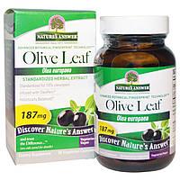 Natures Answer, OleoPein, Стандартизированный экстракт листьев оливы, 60вегетарианских капсул