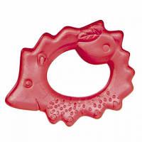 Водный прорезыватель для зубов Ёжик Canpol babies 2/008 (красный)