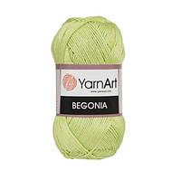 Пряжа Begonia зелёный