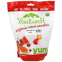 YumEarth, Органическая карамель, леденцы из дикой перечной мяты, 13 унций (368,5 г)