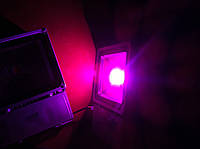 LED фитопрожектор 100 w полный спектр (full spectrum) фитолампа для растений