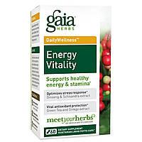 Gaia Herbs, Энергия Жизненной Силы, 60 Вегетарианских Жидких Фито-Капсул