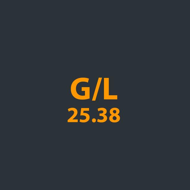 Запчасти для бензопилы G/L 25.38