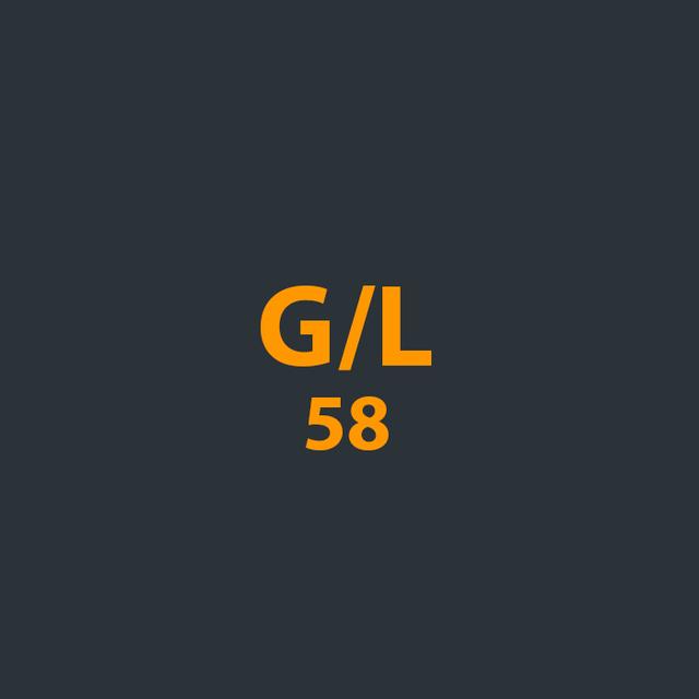 Запчасти для бензопил G/L 58