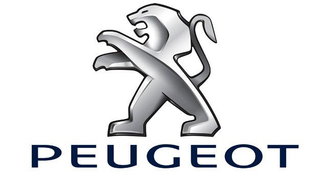 Запчасти Peugeot Citroen Fiat