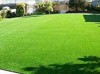 Газонная трава Светлолюбивая для идеального зеленого газона в засушливых районах и на солнечных участках