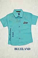 Рубашки, тениски на мальчика Blueland, 1, 3, 4.