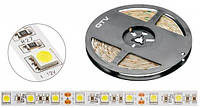 Лента LED SMD 3528 INNOVO, катушка 5м, 6400K, IP65, DC12V, 300 диодов, IP20
