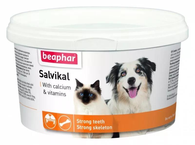 Salvikal минерально-витаминный комплекс для собак и кошек Beaphar