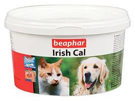 Irish Cal Минеральная добавка для развития скелета, крепких зубов и качественной шерсти Beaphar