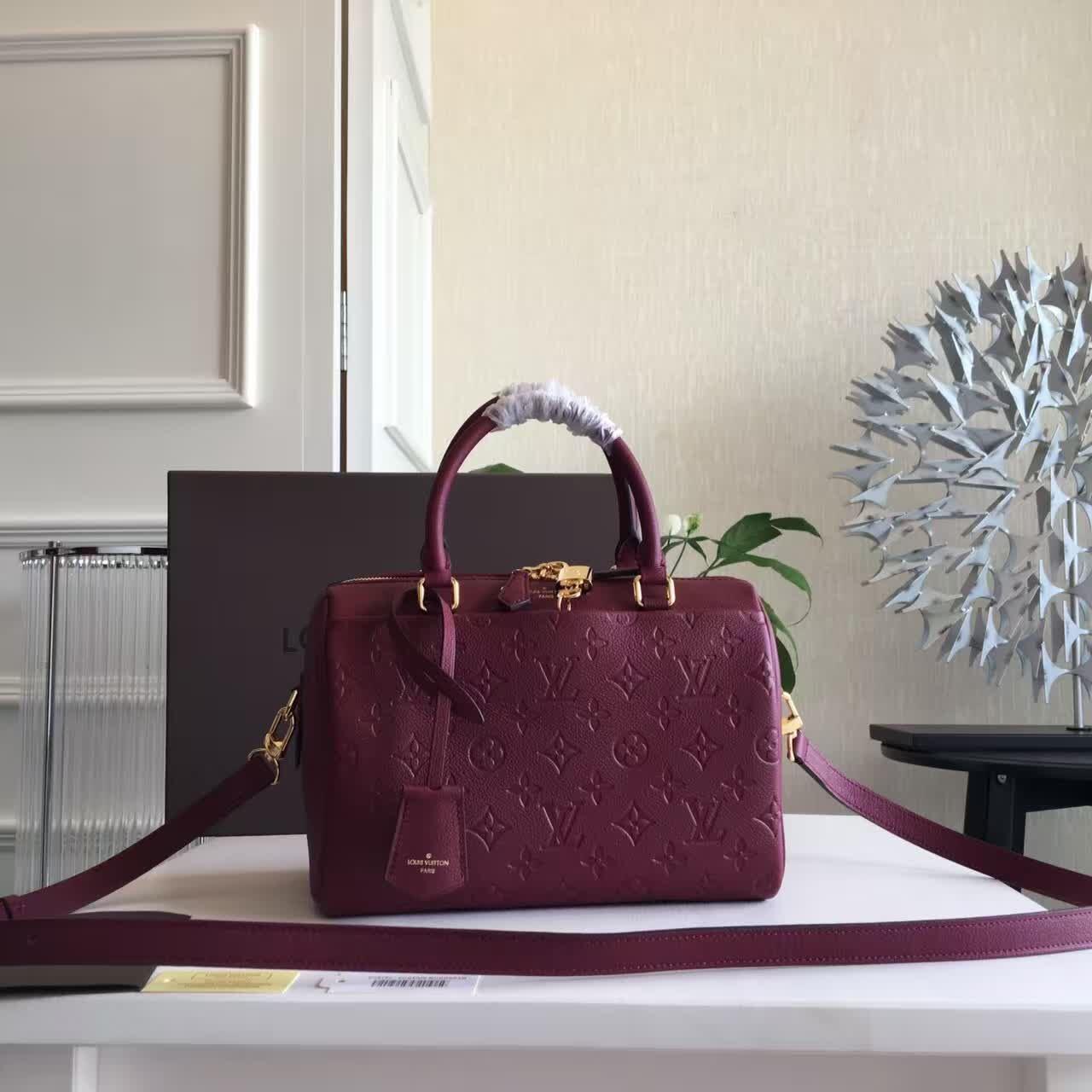 Женская сумка Louis Vuitton Speedy 25