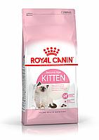 Корм для котят до 12 месяцев Kitten-36, 400 г