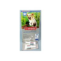 Advantix (Адвантикс) от блох и клещей для крупных пород собак весом от 25 до 40 кг