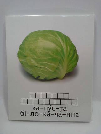 ДМ Свена Вчимося читати Овочі Бобові, фото 2