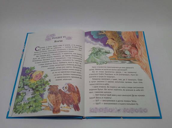 Країна мрій ДИТ Нестайко В Країні Місячних Зайчиків Сонячний зайчик і сонячний вовк, фото 2